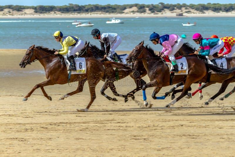 Horse race on Sanlucar of Barrameda, Spain, 2016 stock photography