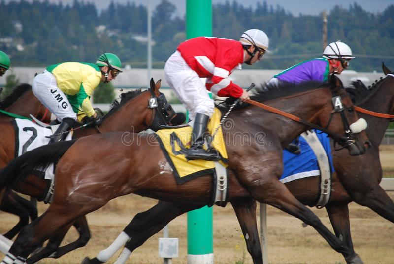 Horse race in Seattle stock photo