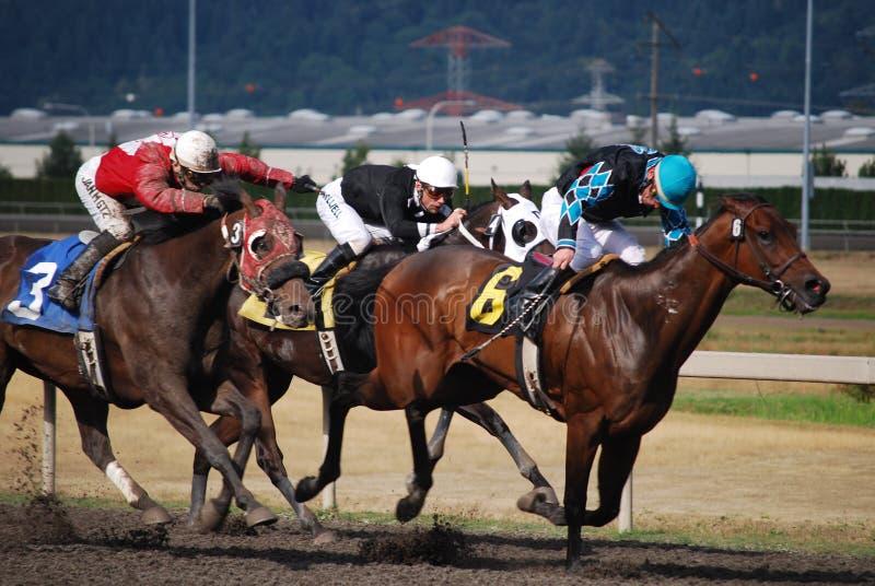 Horse race in Seattle stock photos