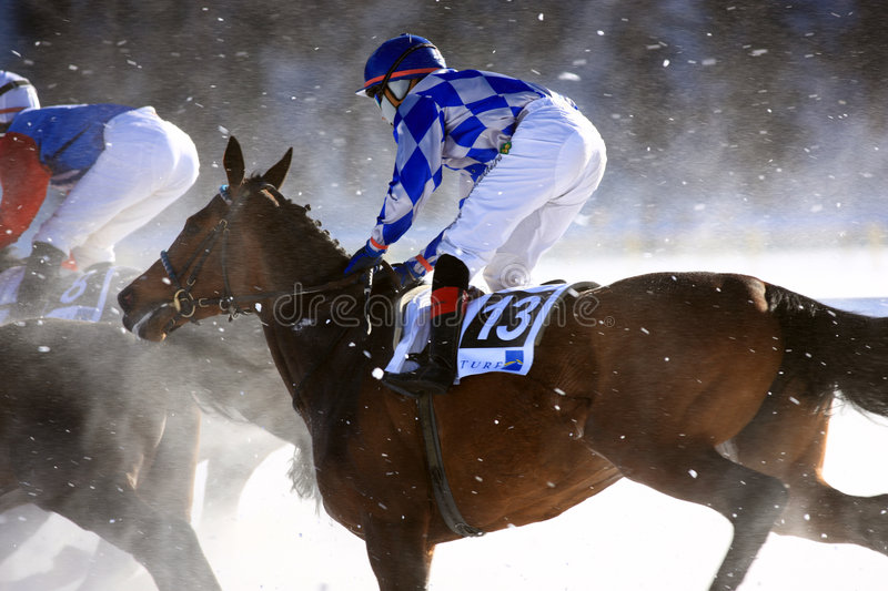 Horse Race on the Snow stock photography
