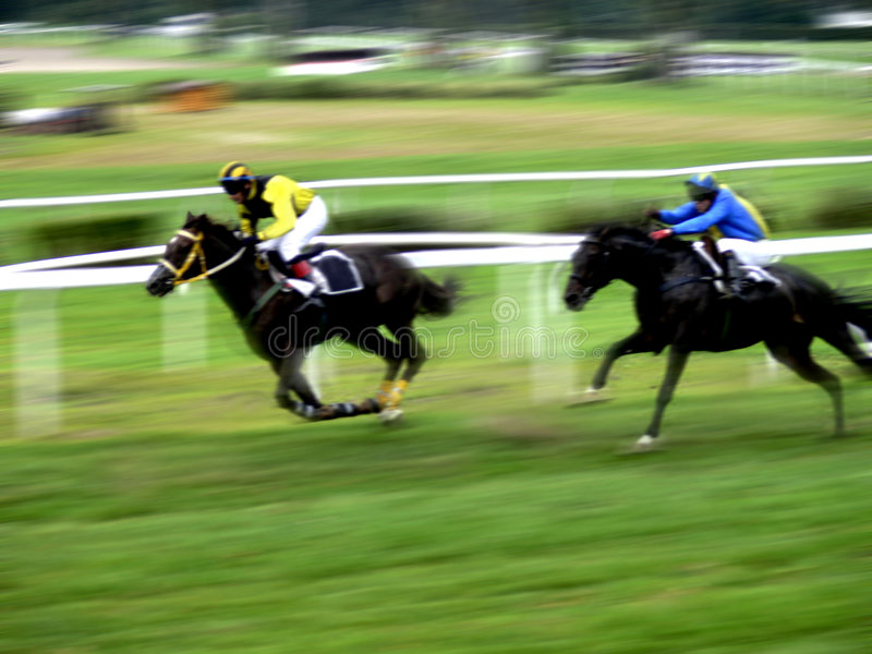 Horse race sprint. Final rush for the victory in a horse race with panning effect