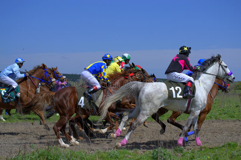Horse race sprint. Jockeys on Purebred Arabian horses side by side.Picture taken on April 20,2014 at annual Horse race competition ,Beloslav town,Bulgaria royalty free stock images
