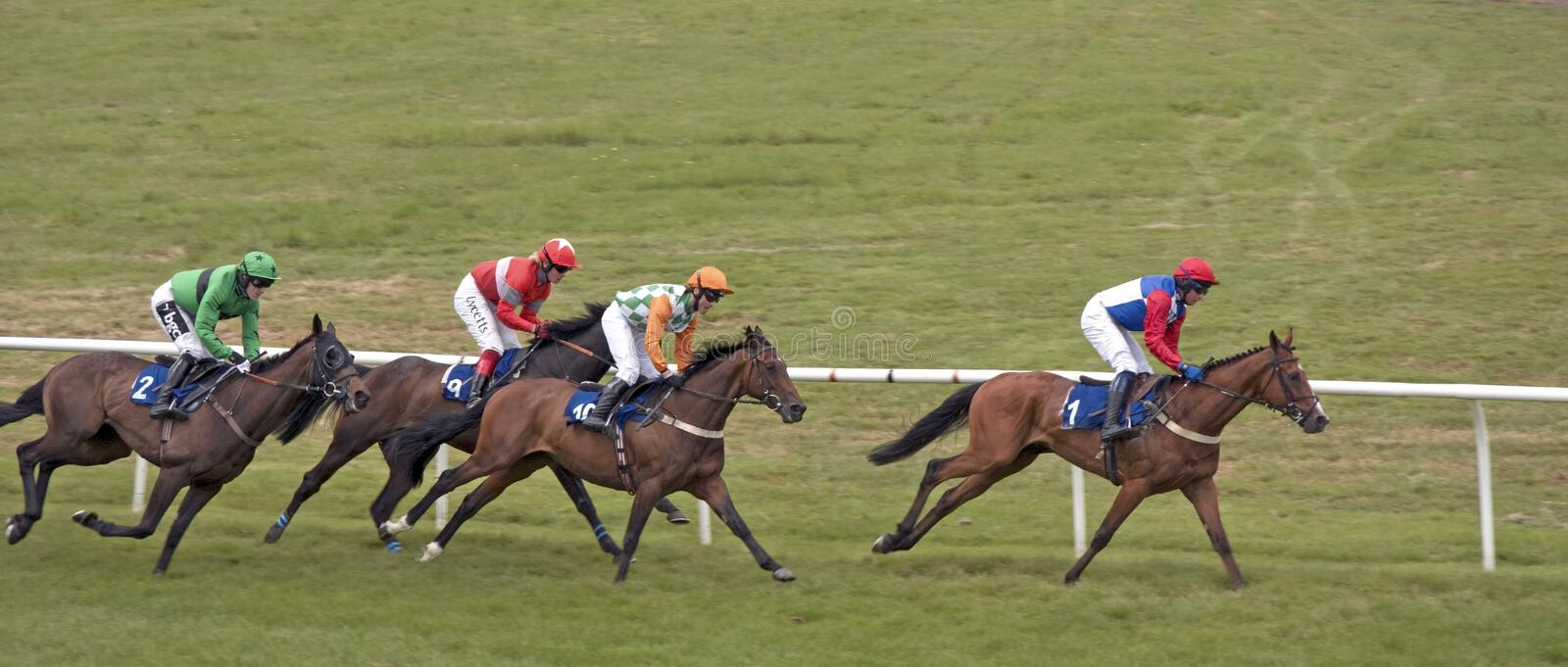 Horse Race Stratford England royalty free stock images