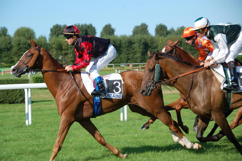 Horse races royalty free stock images