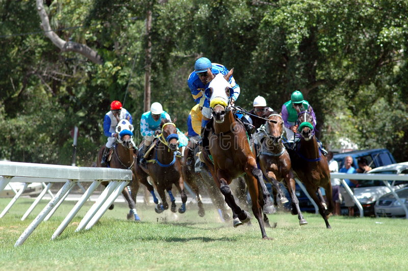 Horse racing. On the Island of Barbados, West Indies stock photos