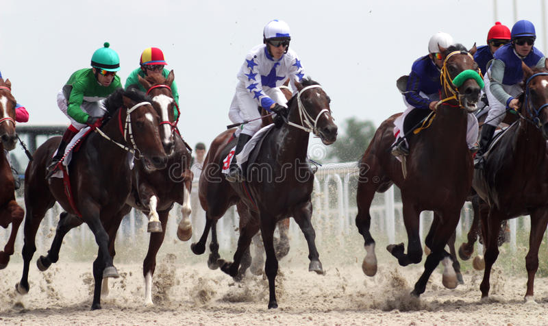Download Horse racing. editorial stock image. Image of leading - 15326549