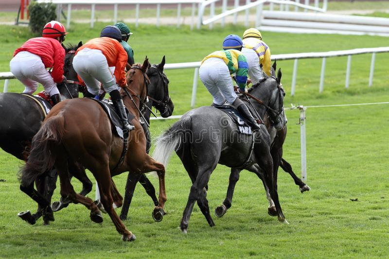 Horse Racing. Details of a Horse Racing stock image