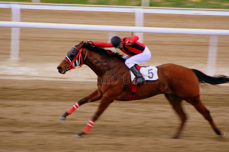 Horse racing. Taken in Athens Olympic Horse Racing Stadium royalty free stock images