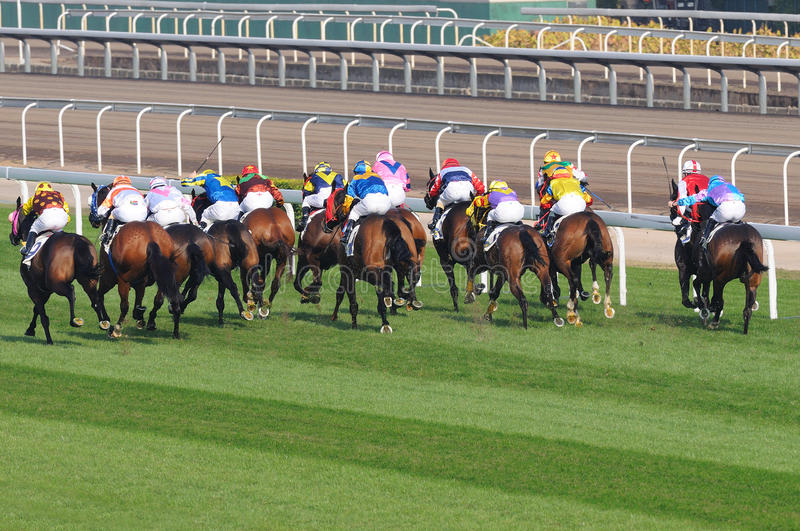 Horse racing. Details of a horse racing royalty free stock image