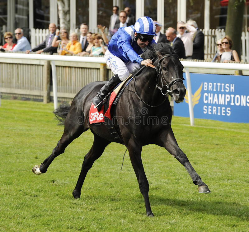 Horse Racing. At Newmarket,England albaasil 1st newmarket 9-7-11 royalty free stock image