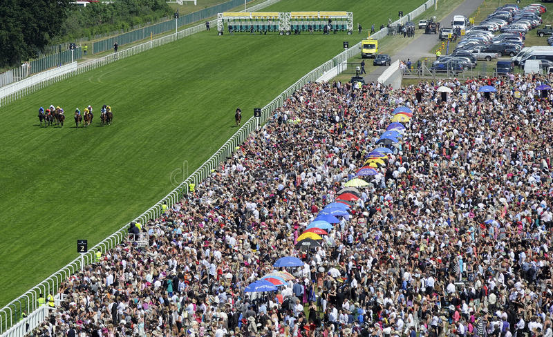 Download Horse Racing Editorial Photo - Image: 21223271