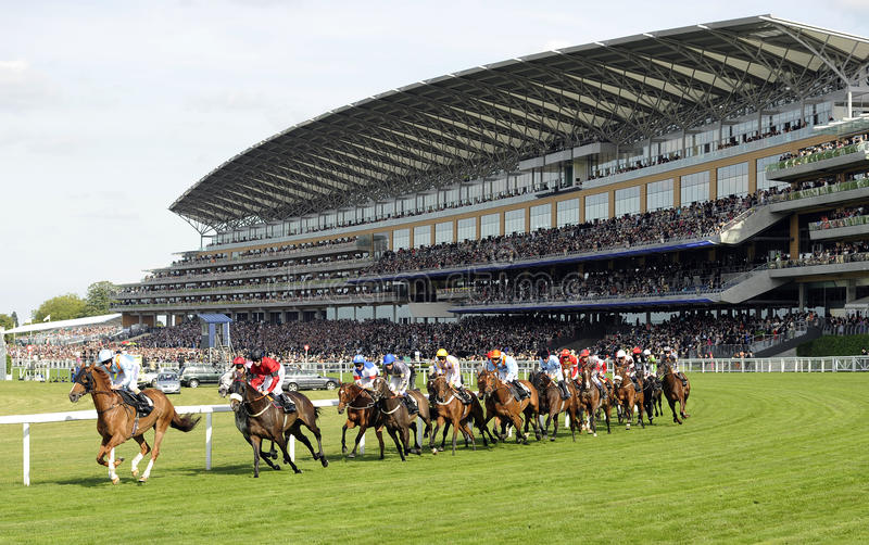 Download Horse Racing editorial stock photo. Image of race, speed - 21223668