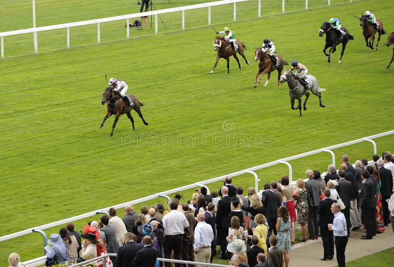 Download Horse Racing editorial stock image. Image of sport, horse - 21260999