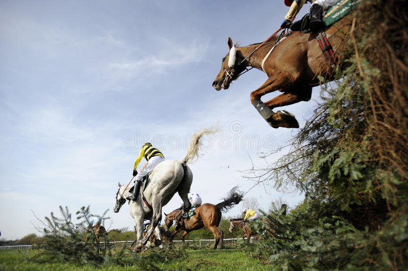 Horse Racing. At The Grand National,Aintree,Liverpool,England 2011 stock image