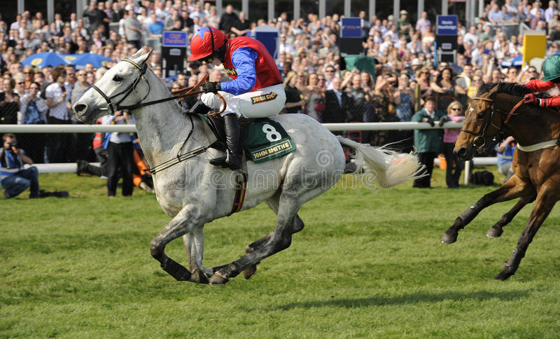 Download Horse Racing editorial stock image. Image of race, jumping - 21559254
