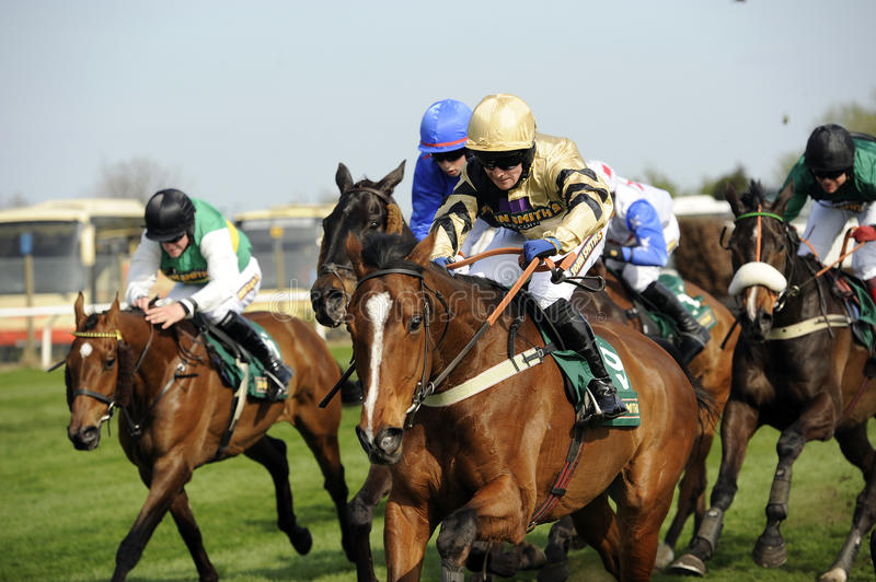Horse Racing. At The Grand National,Aintree,Liverpool,England 2011 royalty free stock photos