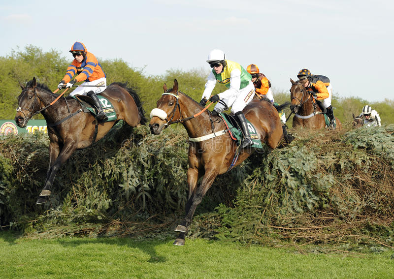 Horse Racing. At The Grand National,Aintree,Liverpool,England 2011. The winner Jason Maguire wearing yellow and green silks ridding Ballabriggs leading the race stock image