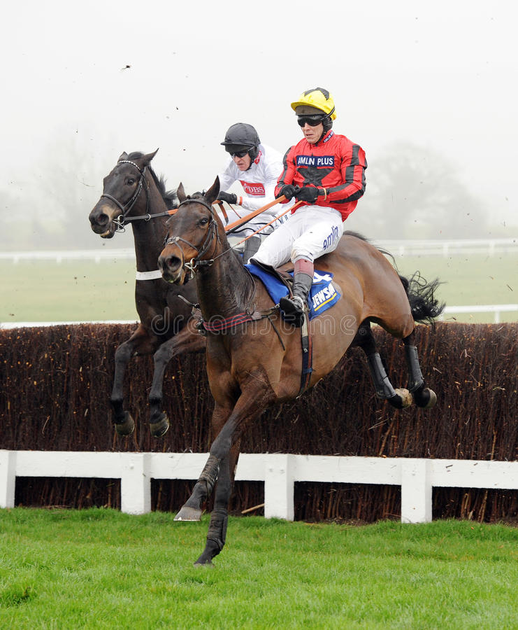 Download Horse Racing editorial stock image. Image of betting - 24262079