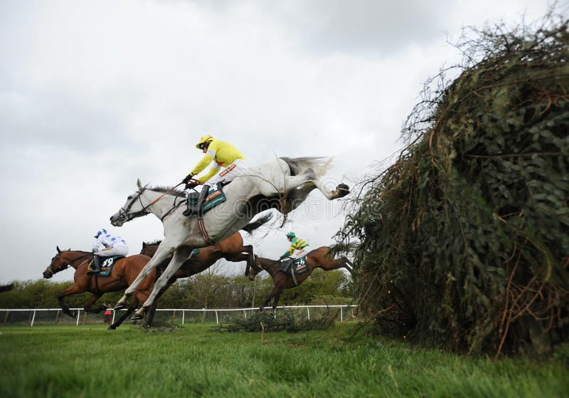 Download Horse Racing editorial photo. Image of riding, horse - 24930816