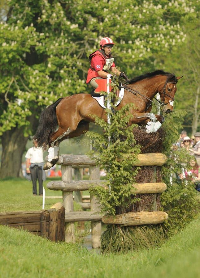 Download Horse Racing editorial image. Image of cheltenham, equestrian - 25212865