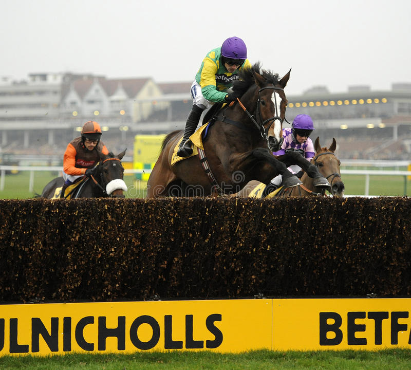 Download Horse Racing Editorial Stock Photo - Image: 25213628