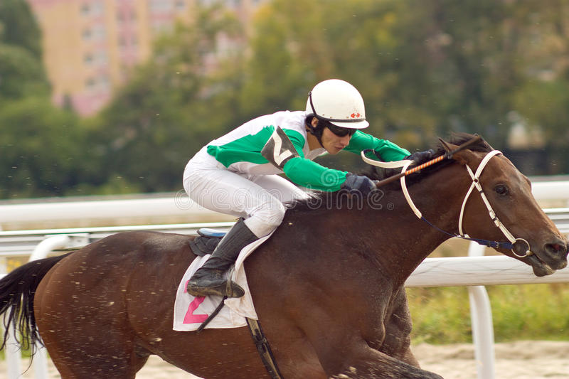 Download Horse racing. stock image. Image of grace, passing, elegance - 26805077