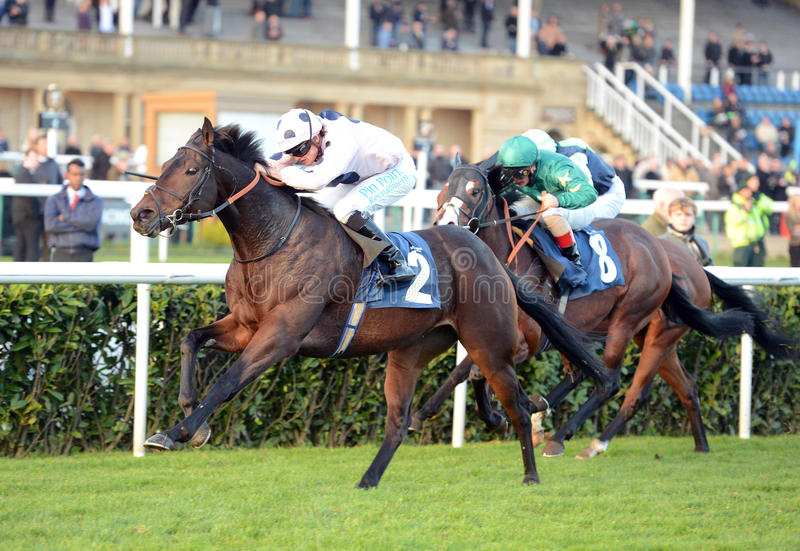 Download Horse Racing editorial image. Image of champion, track - 27546045