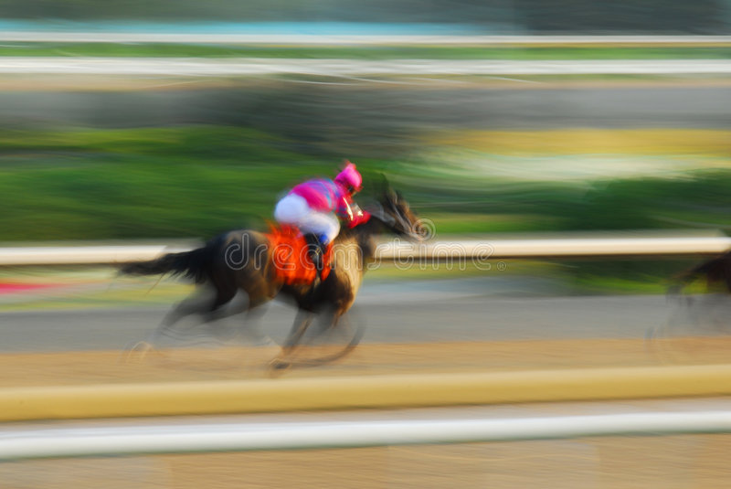 Download Horse racing stock photo. Image of male, race, exercise - 2924476