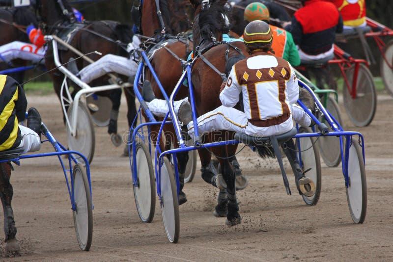 Horse-racing royalty free stock photo