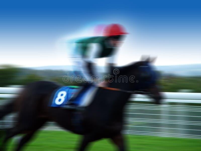 Horse racing. Photo on turf royalty free stock photos