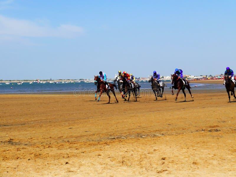 Horse racing on the beach in Sanlucar de Barrameda on August 25, 2019 in Sanlucar de Barrameda, Cadiz, Spain. stock photography