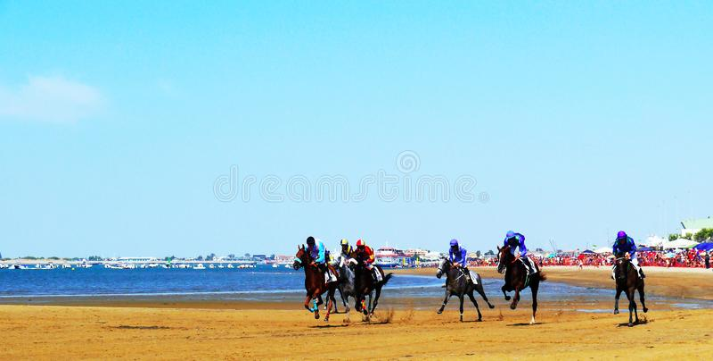 Horse racing on the beach in Sanlucar de Barrameda on August 25, 2019 in Sanlucar de Barrameda, Cadiz, Spain. Europe royalty free stock photo