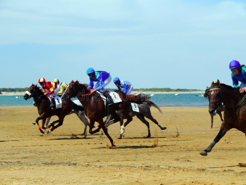 Horse racing on the beach in Sanlucar de Barrameda on August 25, 2019 in Sanlucar de Barrameda, Cadiz, Spain. Europe stock image