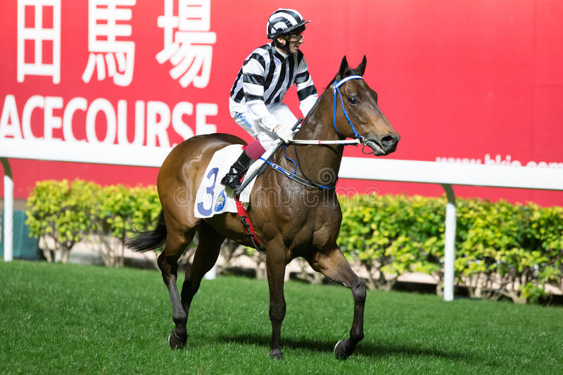 Horse Racing in Hong Kong - Happy Valley Racecourse. Jockey Olivier Doleuze no.3 riding Invisible winning the Race 1 Paterson Handicapat the Happy Valley royalty free stock photo