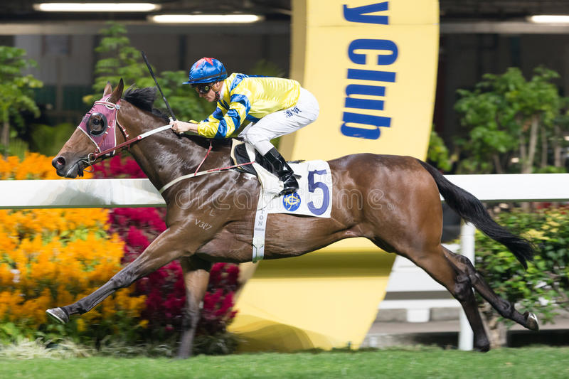 Horse Racing in Hong Kong - Happy Valley Racecourse. Jockey Zac Purton riding ISAAC winning the Race 3 Great George Handicap at the Happy Valley Racecourse, Hong royalty free stock image