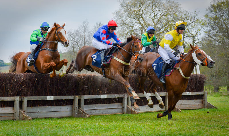 Horse Racing Jumping Fence - Peper Harow. Point-to-Point racing is an amateur version of National Hunt racing or the Steeplechase. The name Point-to-Point refers stock images