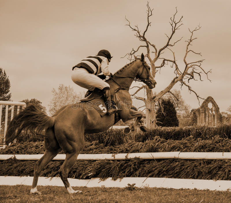 Horse Racing Jumping Fence - Peper Harow. Point-to-Point racing is an amateur version of National Hunt racing or the Steeplechase. The name Point-to-Point refers stock photos