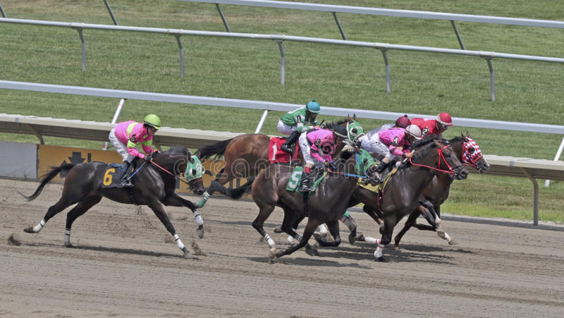 Horse Racing. At Monmouth Park Racetrack, New Jersey as horses race toward finish line stock photos