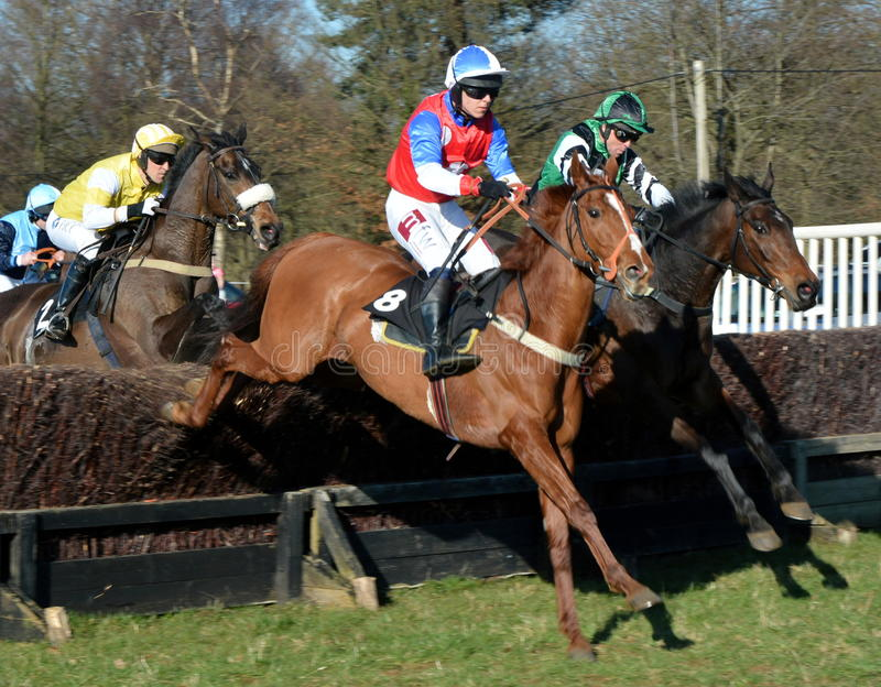 Horse racing over fences. A Point-to-Point amateur horse racing event over the jumps in the UK stock photos