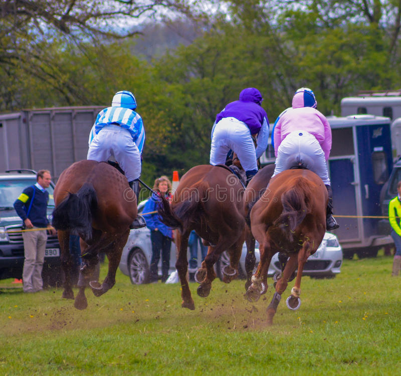 Horse Racing. A picture of horse racing at Peper Harow in Surrey May 2015 stock photo