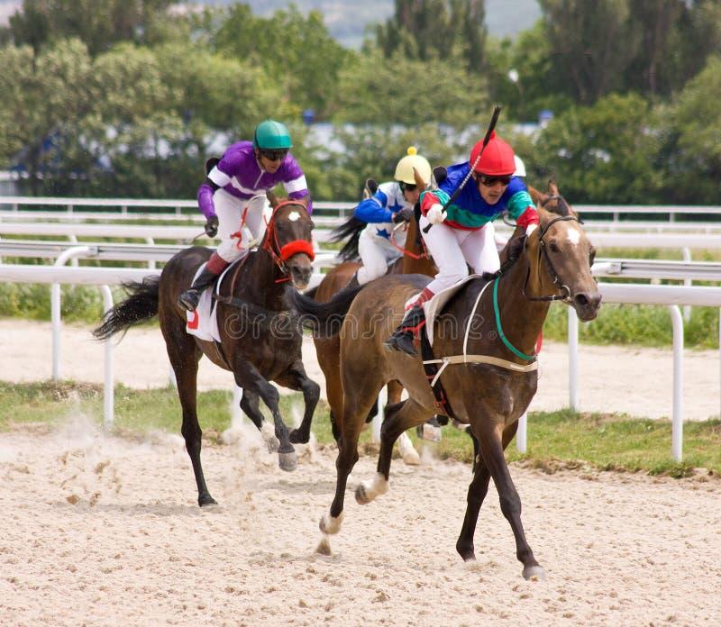 Download Horse racing. stock photo. Image of pyatigorsk, jockey - 30537014