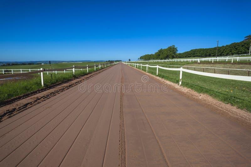 Horse Racing Sand Training