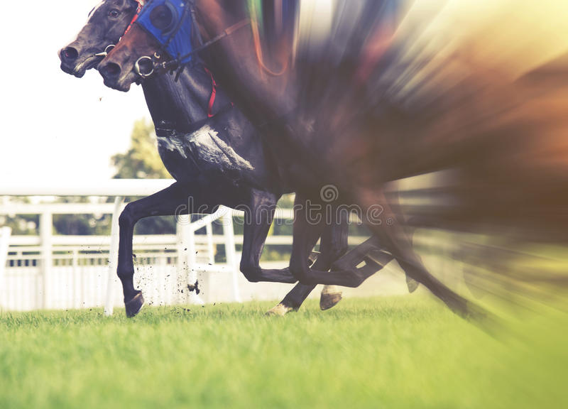Horse racing, selective focus and blurred, vintage effect royalty free stock photography