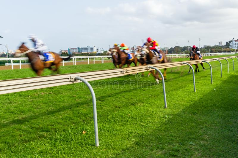 Horse Racing Speed Motion Blur stock images