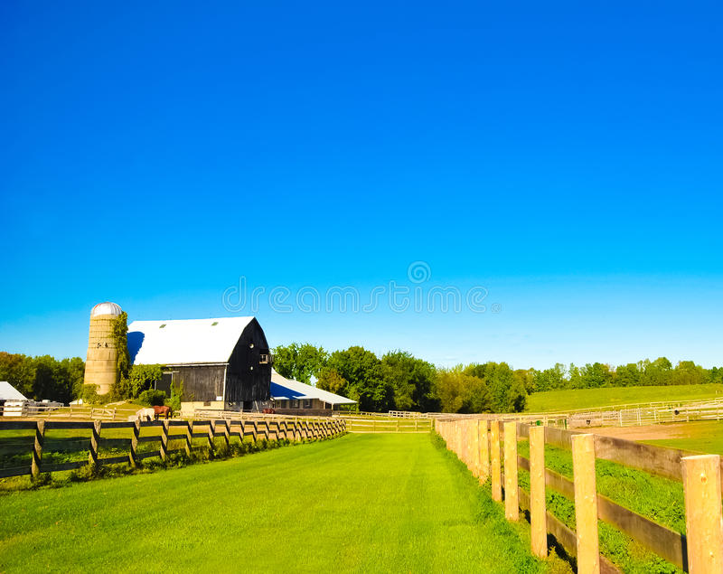 A horse ranch in Barrie, Canada. On summer 2011 stock images