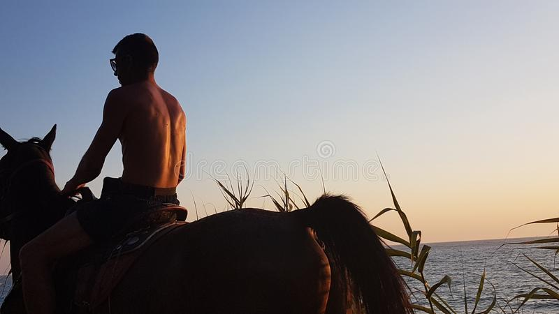 horse ridding in sunset time by the sea preveza greece stock photo