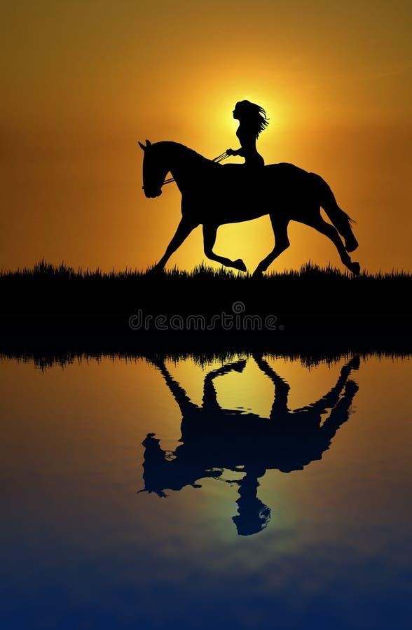 Horse Ride Reflection stock image