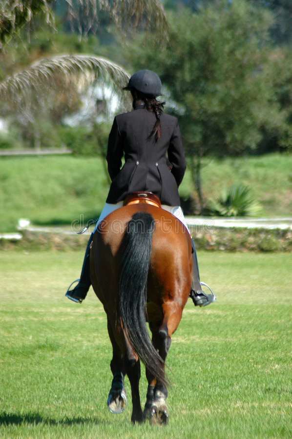 Download Horse Rider Stock Photo - Image: 2250500