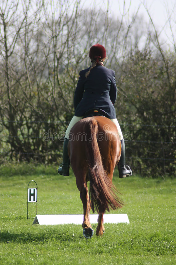 Horse and rider from behind