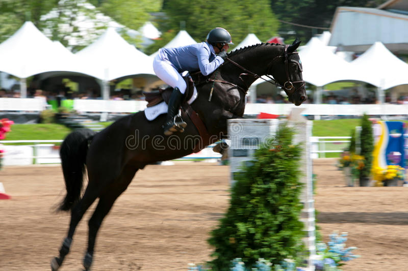 Download Horse Rider At The Bromont Jumping Competition Editorial Photo - Image of beautiful, equitation: 20596386